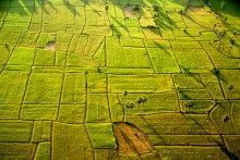 Microlight Cambodia